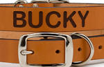 Personalized Cat Leather Collar in Tan